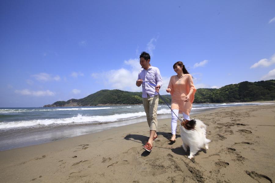 海までは徒歩10分♪ワンちゃんとのお散歩にも最適♪